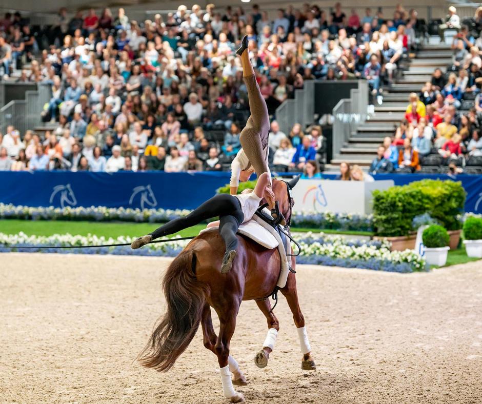 Jonge paarden succesvol mee op concours!